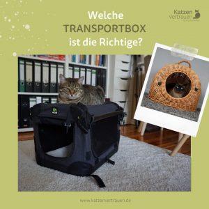 katzentransportbox